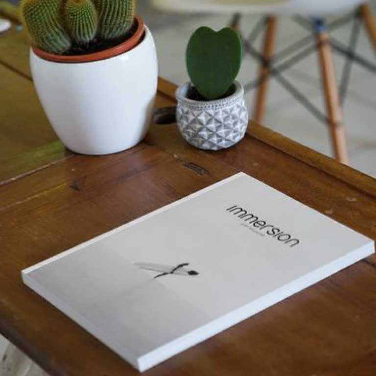 Immersion Surf Magazine translations by K-Freelance